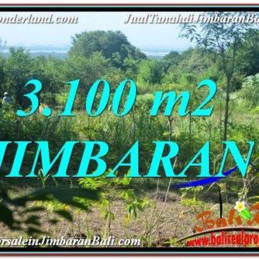 FOR SALE Beautiful 3,100 m2 LAND IN JIMBARAN TJJI113